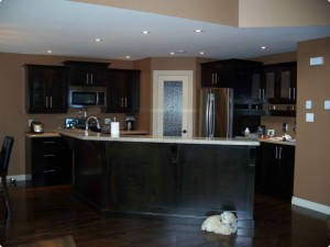 Kitchen with dark cabinets and light counter tops with cute dog hanging out